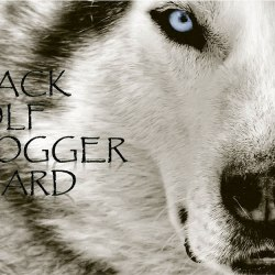 Black Wolf Blogger